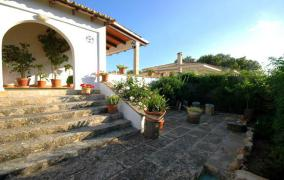 Detached house with separate guest-apartment in Bellavista - DomoPlan Inmobiliaria, Real Estate, Immobilien