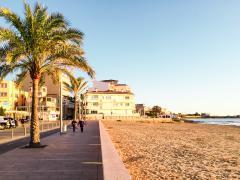 New first sea line groundfloor in Ciudad Jardin Palma - DomoPlan Inmobiliaria, Real Estate, Immobilien