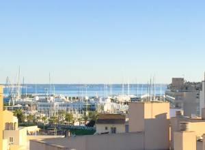 Real Estate - Immobilien - Inmobiliaria DomoPlan Tenis Palma de Mallorca
